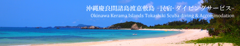 沖縄慶良間諸島渡嘉敷島